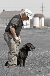 pat and black lab setting up for marked retrieve